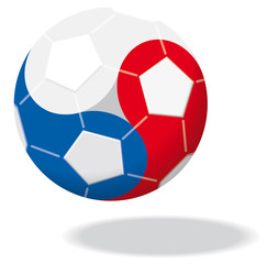 Fußball Europameisterschaft Frankreich