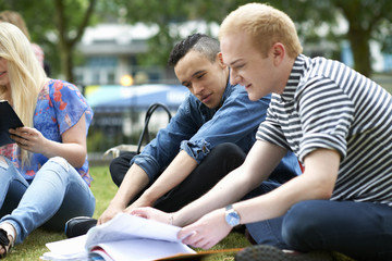 Male students sitting working on college campus