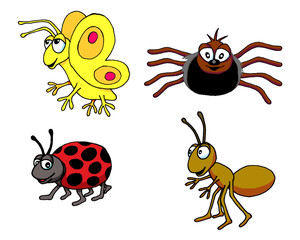 Insect Group
