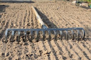 Rake on soil