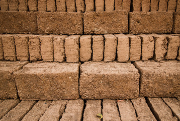Earthern bricks