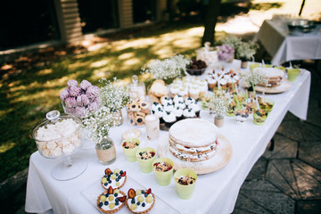 Delicious wedding reception candy bar Dessert table for a wedding outdoor party. Ombre cake, cupcakes, sweetness and flowers