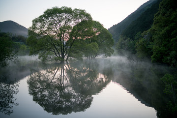 Murou symmetry lake verdure,uda ciyu,nara,japan