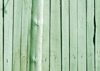 Green wooden fence texture.