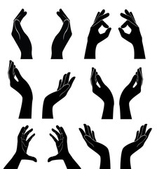free hands holding vector