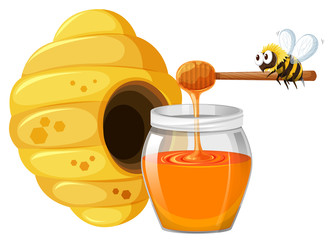 Bee and honey in jar
