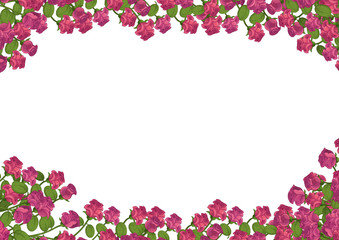 Tuinposter Azalea Cartoon frame with roses - isolated - illustration for the children