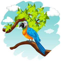 Parrot standing on branch