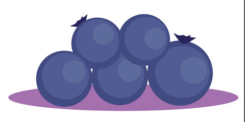Heidelbeeren Blaubeeren Vektor freigestellt
