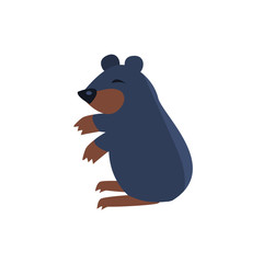 Sleeping Bear Simplified Cute Illustration