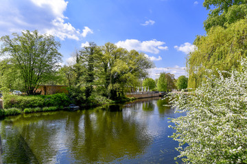Havelufer in Potsdam im Frühling