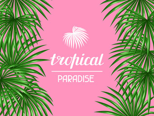 Paradise card with palms leaves. Decorative image tropical leaf of palm tree Livistona Rotundifolia. Image for holiday invitations, greeting cards, posters, brochures and advertising booklets