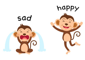 Opposite words sad and happy vector