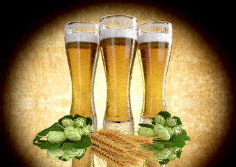 three glasses of beer with barley and hops