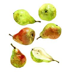 set of watercolor pear