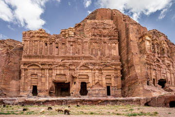 Sheeps grazing next to the Palace and Corinthian Tombs in the ancient city of Petra (Jordan)