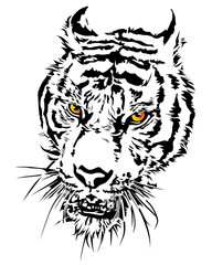 Tiger head silhouette and colorful with eye.