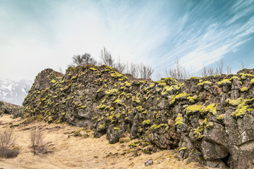 Green moss on rough cliffs