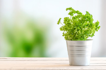 Parsley in a bucket on a table