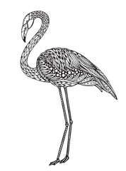 Hand drawn flamingo bird in ornate fancy doodle style.