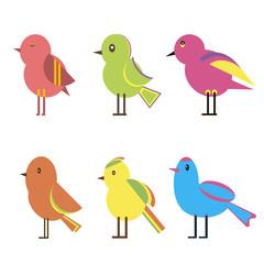 Set Color Birds