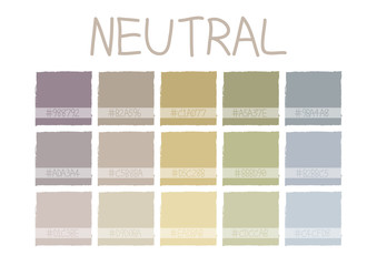 Neutral Color Tone with Code Vector Illustration