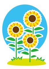 夏 向日葵