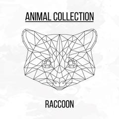 Geometric raccoon head