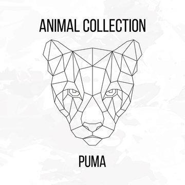 Geometric puma head