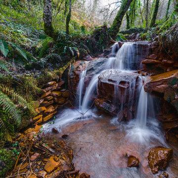 ferruginous water stream