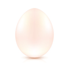 Vector egg on white background
