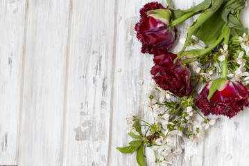 Spring flowers red tulips in vase