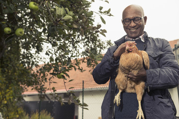 Black man stroking a chicken bird and smiling in farm, Bavaria, Germany