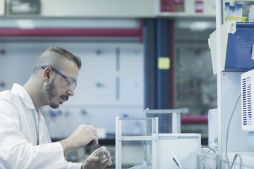 Young male scientist working in a pharmacy laboratory, Freiburg im Breisgau, Baden-Württemberg, Germany