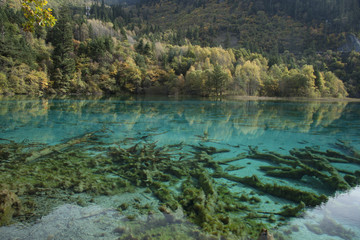 Beautiful scenery in Jiuzhaigou, Sichuan Province, China