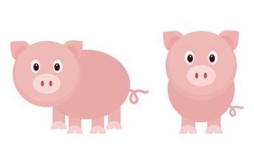 funny pig set