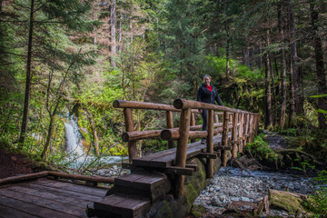 Sitka Alaska Log Bridge