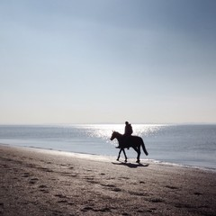 Silhouette of person horse riding along water's edge on beach
