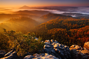 Cold misty foggy morning with sunrise in a fall valley of Bohemian Switzerland park. Hills with fog, landscape of Czech Republic, beautiful national park Ceske Svycarsko