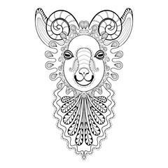 Vector zentangle Ram Head illustration,  Goat print for adult an