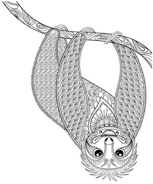Vector zentangle Sloth print for adult coloring page. Hand drawn