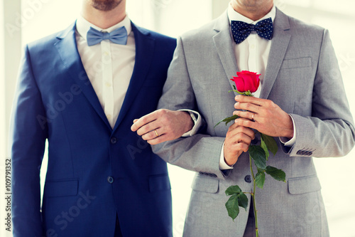 Homosexual marriages in spain