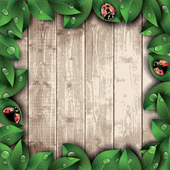 Ladybugs and leaves on wooden texture background.