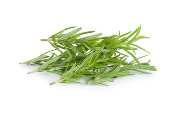 Fresh rosemary on white background.