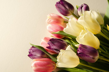 Bouquet of pink, purple and white tulips on white background for spring, Easter or Mother's Day