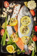 Fresh sea bream and salmon on dark  background