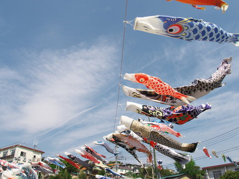 koi(carp) streamers at Fuku-ura fishing port