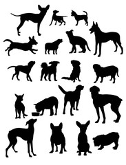 Dog Pet Silhouettes, art vector design