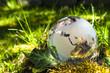 Weltkugel aus Glas, Erde mit Gras und Sonne, Naturschutz, Umweltschutz, Klimaschutz