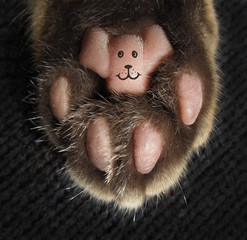 There is a smiley on a cat's paw.